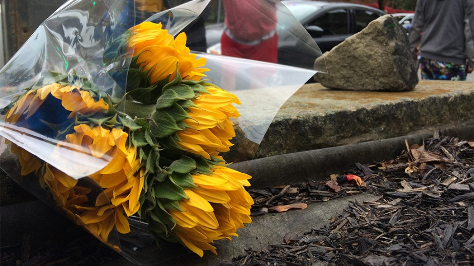pittsburg flowers2